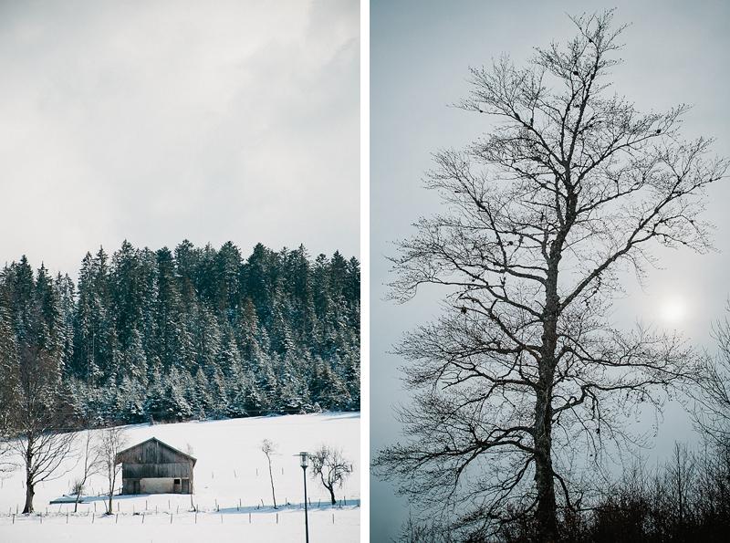 Paysage Doubs Brume arbre